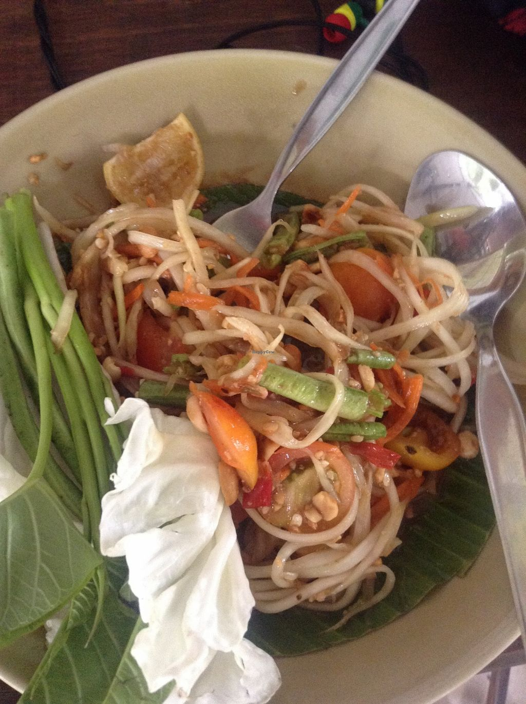 "Photo of Pun Pun Organic Vegetarian Restaurant - Wat Suan Dok  by <a href=""/members/profile/YozzyOti"">YozzyOti</a> <br/>somtum thai <br/> September 18, 2015  - <a href='/contact/abuse/image/12006/118254'>Report</a>"