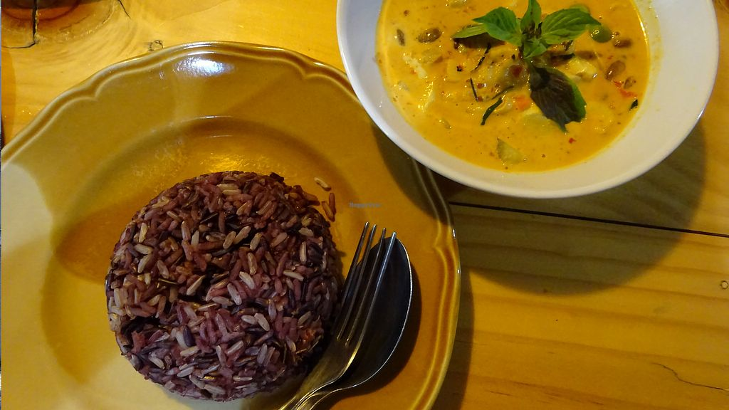 "Photo of Pun Pun Organic Vegetarian Restaurant - Wat Suan Dok  by <a href=""/members/profile/Umeko"">Umeko</a> <br/>yellow curry and rice <br/> November 23, 2017  - <a href='/contact/abuse/image/12006/328352'>Report</a>"