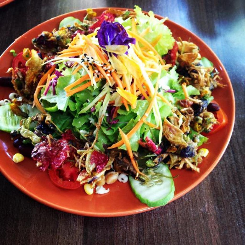 "Photo of Pun Pun Organic Vegetarian Restaurant - Wat Suan Dok  by <a href=""/members/profile/mikeybutt"">mikeybutt</a> <br/>fried flower salad. so fresh SO amazing.  <br/> November 17, 2014  - <a href='/contact/abuse/image/12006/85944'>Report</a>"