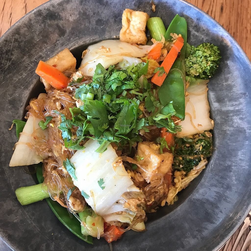 "Photo of Green Elephant Vegetarian Bistro  by <a href=""/members/profile/Sarah%20P"">Sarah P</a> <br/>bean thread noodle special <br/> July 6, 2017  - <a href='/contact/abuse/image/12221/277119'>Report</a>"