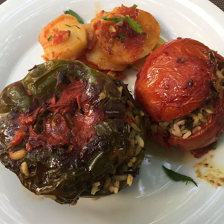 "Photo of Lemonokipos - Lemon Tree Garden  by <a href=""/members/profile/ForbesColeman"">ForbesColeman</a> <br/>stuffed pepper & tomato main <br/> June 17, 2017  - <a href='/contact/abuse/image/12266/270107'>Report</a>"
