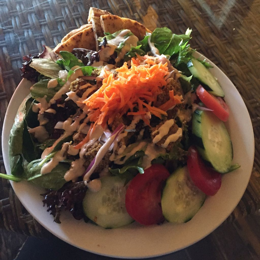 """Photo of Twisted Branch Tea Bazaar  by <a href=""""/members/profile/MaddyR"""">MaddyR</a> <br/>awesome falafel salad <br/> March 23, 2017  - <a href='/contact/abuse/image/12282/239928'>Report</a>"""