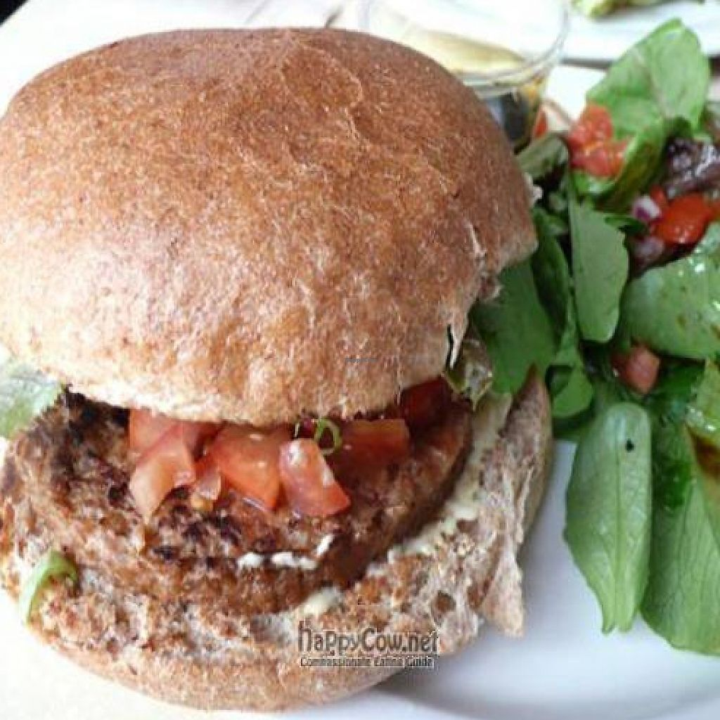 """Photo of CLOSED: MUSE on 8th  by <a href=""""/members/profile/quarrygirl"""">quarrygirl</a> <br/>vegan burger <br/> June 13, 2009  - <a href='/contact/abuse/image/12483/189970'>Report</a>"""