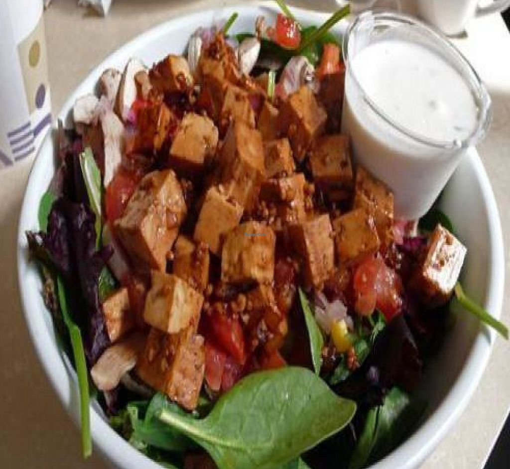 """Photo of CLOSED: MUSE on 8th  by <a href=""""/members/profile/quarrygirl"""">quarrygirl</a> <br/>vegan build your own salad with tofu and vegan ranch <br/> June 13, 2009  - <a href='/contact/abuse/image/12483/189971'>Report</a>"""
