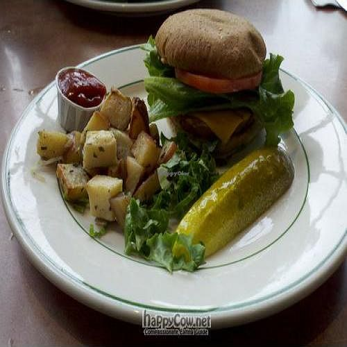"""Photo of Beans and Barley Market & Cafe  by <a href=""""/members/profile/SynthVegan"""">SynthVegan</a> <br/>Tofu burger made vegan (with Vegenaise and vegan cheese) <br/> May 28, 2011  - <a href='/contact/abuse/image/12504/8831'>Report</a>"""