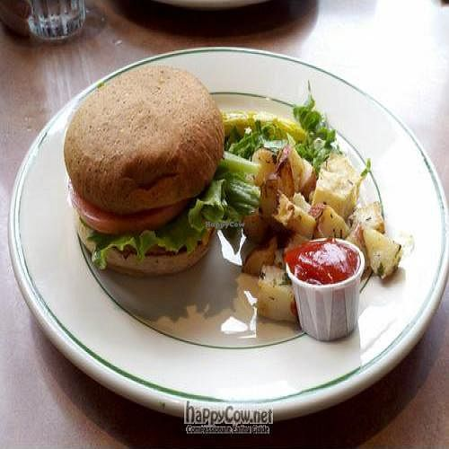 """Photo of Beans and Barley Market & Cafe  by <a href=""""/members/profile/SynthVegan"""">SynthVegan</a> <br/>Tofu burger made vegan (with Vegenaise and vegan cheese) <br/> May 28, 2011  - <a href='/contact/abuse/image/12504/8832'>Report</a>"""
