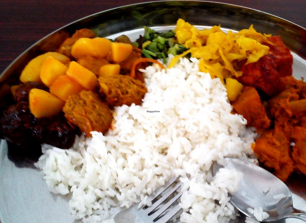 """Photo of CLOSED: Khush Vegetarian  by <a href=""""/members/profile/Chalice777"""">Chalice777</a> <br/>Rice with an assortment of vegetables and mock meat <br/> April 18, 2015  - <a href='/contact/abuse/image/12739/99436'>Report</a>"""