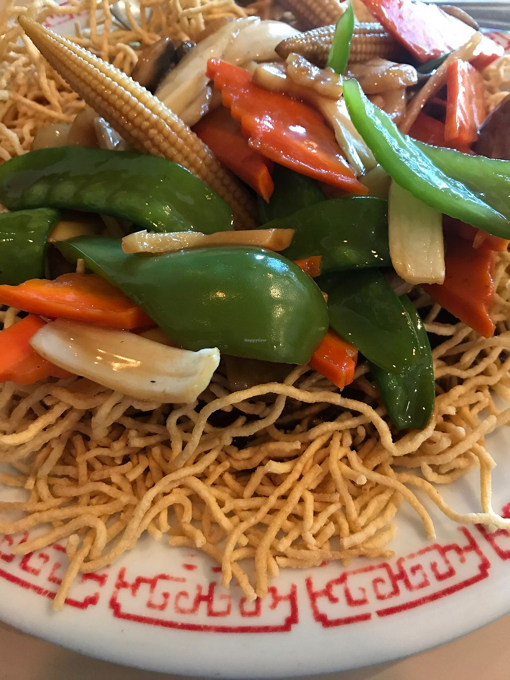 """Photo of Saigon Family Restaurant  by <a href=""""/members/profile/leftywilliams"""">leftywilliams</a> <br/>crispy lo mein  <br/> July 3, 2017  - <a href='/contact/abuse/image/12749/276404'>Report</a>"""