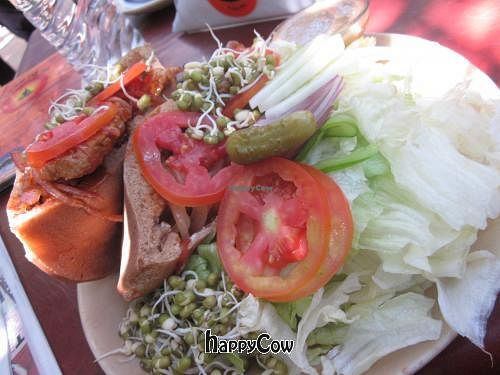 """Photo of Bean Me Up  by <a href=""""/members/profile/Kalorienbombe"""">Kalorienbombe</a> <br/>Seitan Pita sandwich with salad <br/> May 20, 2013  - <a href='/contact/abuse/image/12800/48395'>Report</a>"""