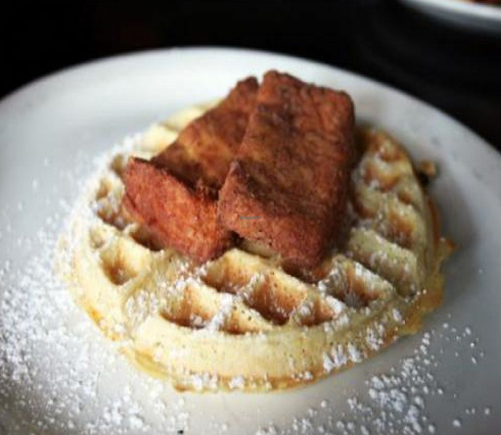 """Photo of Hungry Tiger  by <a href=""""/members/profile/quarrygirl"""">quarrygirl</a> <br/>'chicken' and waffles': seasoned chicken-fried tofu served on a delicious waffle <br/> December 26, 2011  - <a href='/contact/abuse/image/12821/189543'>Report</a>"""
