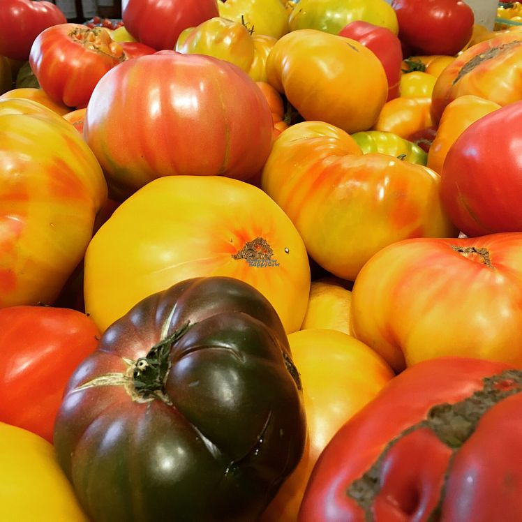 """Photo of Whole Foods Market  by <a href=""""/members/profile/VeganCookieLover"""">VeganCookieLover</a> <br/>heirloom tomatoes  <br/> September 30, 2016  - <a href='/contact/abuse/image/12836/178636'>Report</a>"""