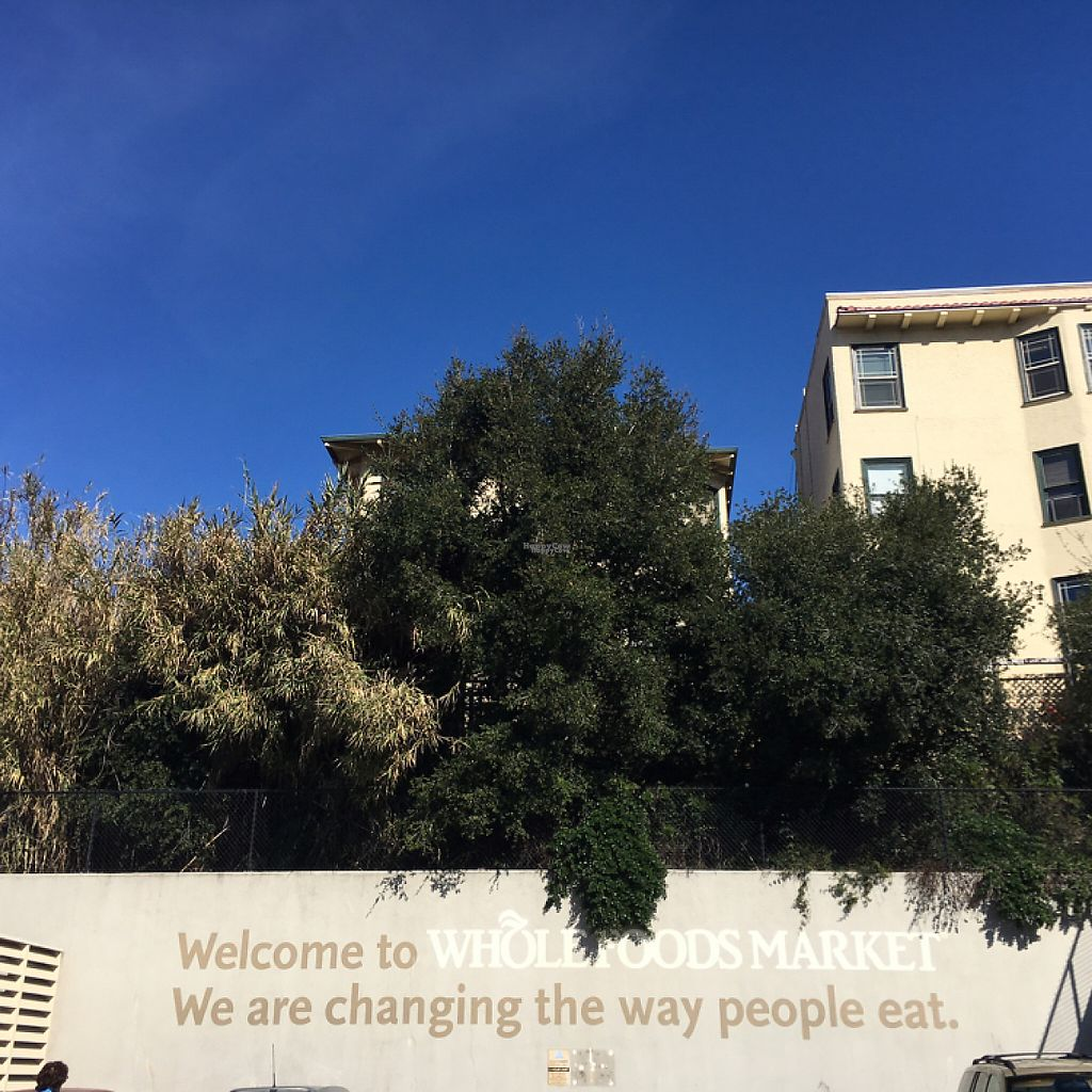 """Photo of Whole Foods Market - Oakland  by <a href=""""/members/profile/Zombiecynthia"""">Zombiecynthia</a> <br/>we are changing the way people eat <br/> January 29, 2017  - <a href='/contact/abuse/image/12892/218738'>Report</a>"""