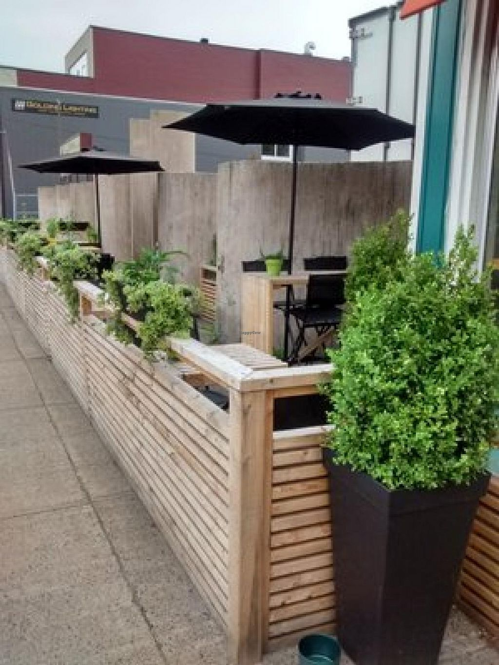 """Photo of Heartwood Bakery & Cafe - Quinpool Rd  by <a href=""""/members/profile/QuothTheRaven"""">QuothTheRaven</a> <br/>Patio <br/> July 24, 2015  - <a href='/contact/abuse/image/1294/110813'>Report</a>"""