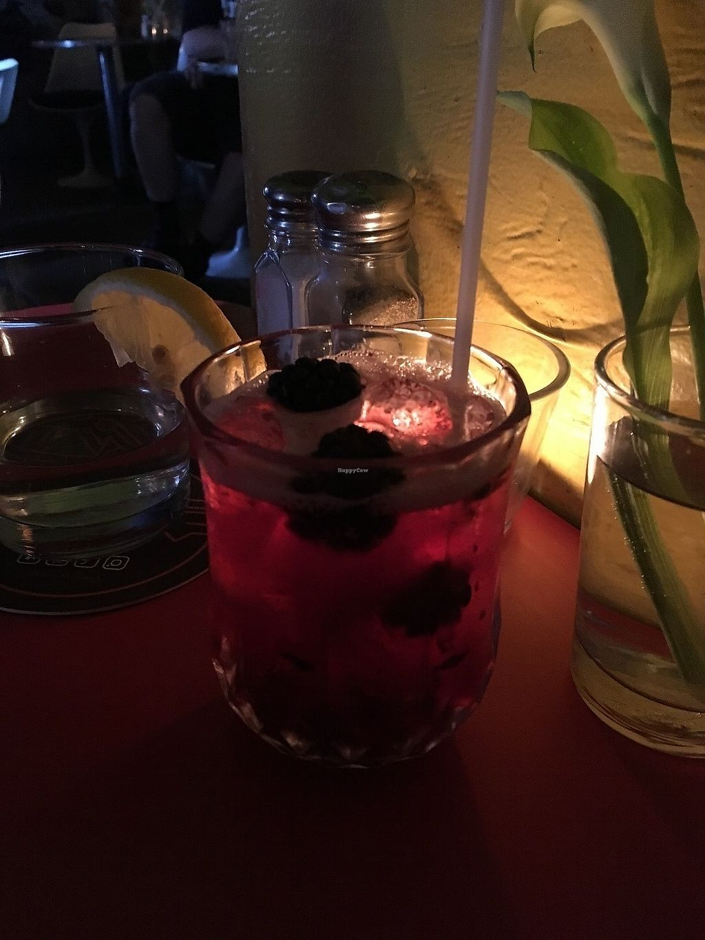 """Photo of Jane Bond Cafe  by <a href=""""/members/profile/Cat_Mamma"""">Cat_Mamma</a> <br/>They always have vegan options and great cocktails <br/> June 18, 2017  - <a href='/contact/abuse/image/1304/270252'>Report</a>"""