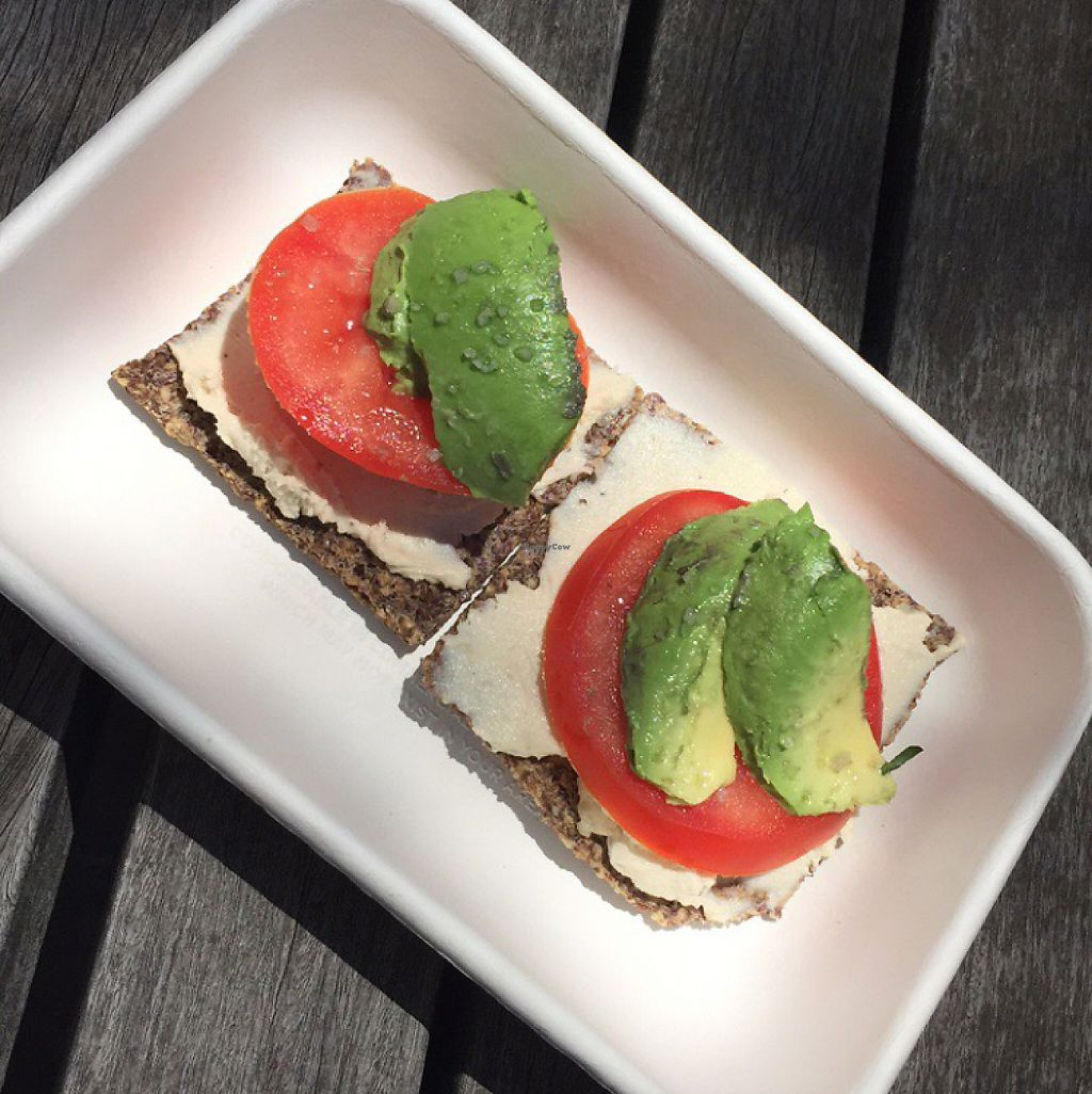 """Photo of Catch A Healthy Habit Cafe  by <a href=""""/members/profile/alexajmorales"""">alexajmorales</a> <br/>""""bagel"""" with avocado.  <br/> May 21, 2017  - <a href='/contact/abuse/image/13054/261067'>Report</a>"""