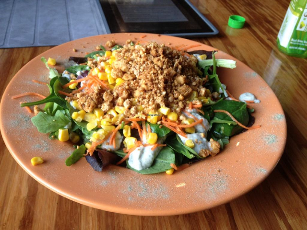 "Photo of Papa G's Vegan Organic Deli  by <a href=""/members/profile/JohnGardner"">JohnGardner</a> <br/>This is the 'Epic Taco Salad'. not on the website's menu, but is on the regular in-store menu <br/> March 3, 2014  - <a href='/contact/abuse/image/13084/65186'>Report</a>"