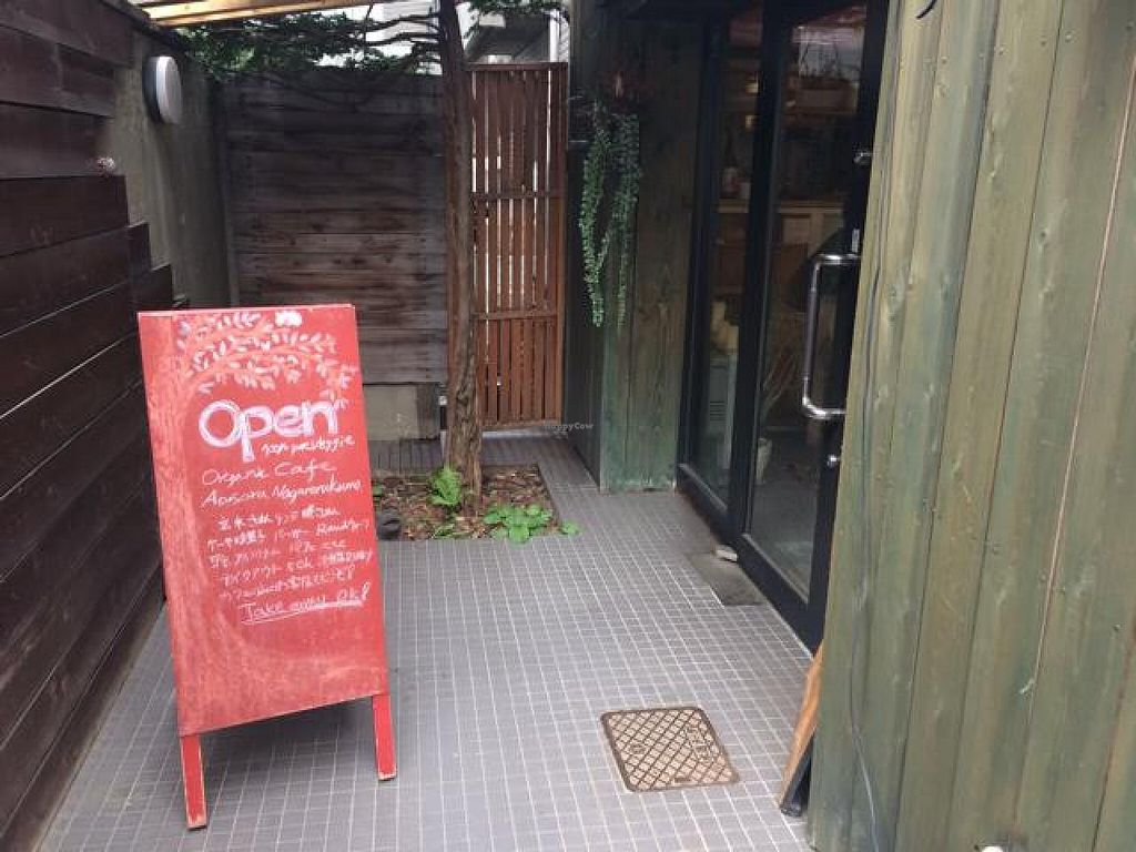 "Photo of Aoi Sora Organic Cafe  by <a href=""/members/profile/JesseWaugh"">JesseWaugh</a> <br/>door <br/> May 1, 2014  - <a href='/contact/abuse/image/13094/69033'>Report</a>"