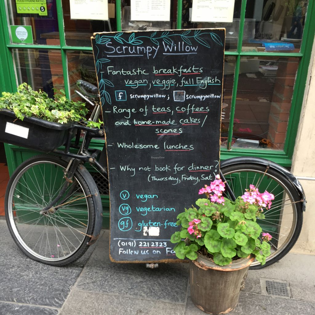 """Photo of CLOSED: Sweet Memories at Study Cafe  by <a href=""""/members/profile/hack_man"""">hack_man</a> <br/>Outside board  <br/> July 9, 2016  - <a href='/contact/abuse/image/13344/158679'>Report</a>"""