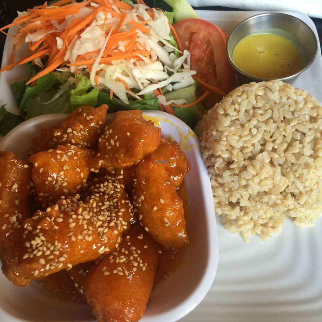 """Photo of CLOSED: The Vegan House  by <a href=""""/members/profile/DeltaDiva5"""">DeltaDiva5</a> <br/>Orange Soy Chicken <br/> August 3, 2016  - <a href='/contact/abuse/image/13377/165186'>Report</a>"""