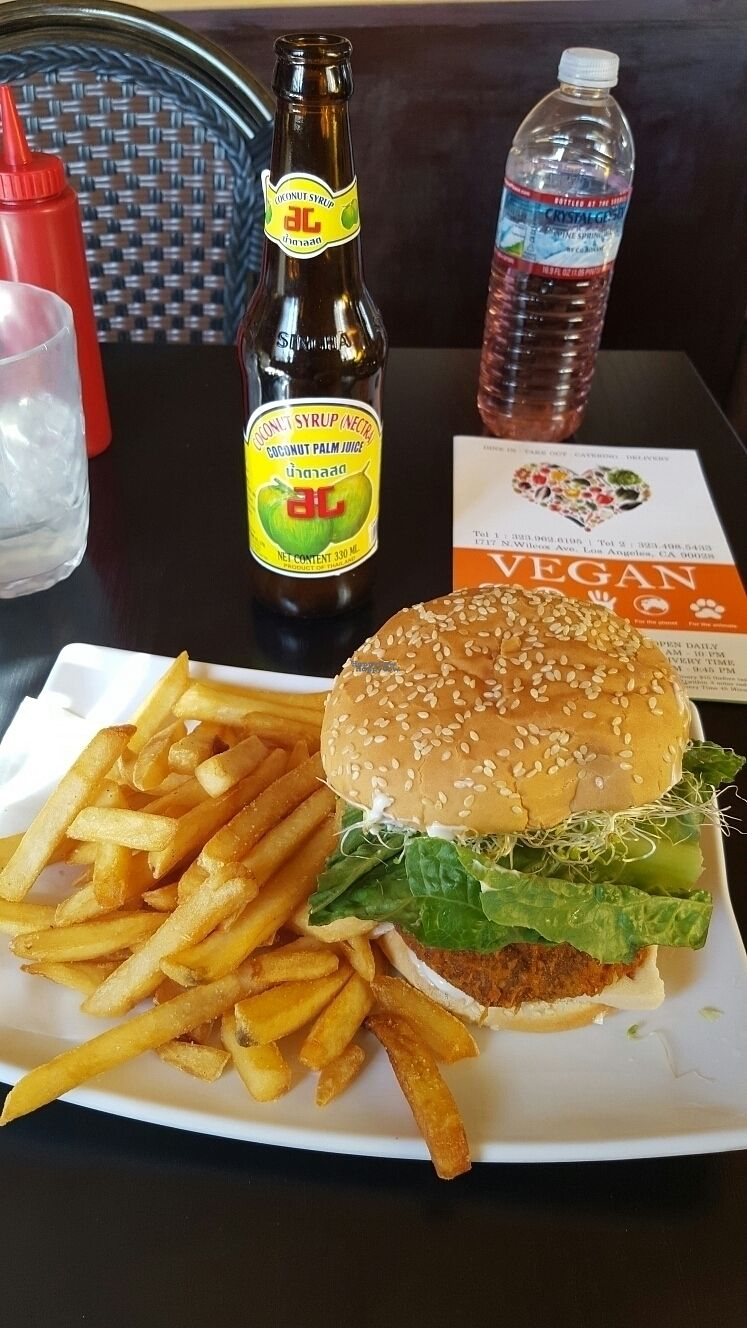 """Photo of CLOSED: The Vegan House  by <a href=""""/members/profile/Mysticj"""">Mysticj</a> <br/>vegan chicken burger <br/> October 20, 2016  - <a href='/contact/abuse/image/13377/183265'>Report</a>"""