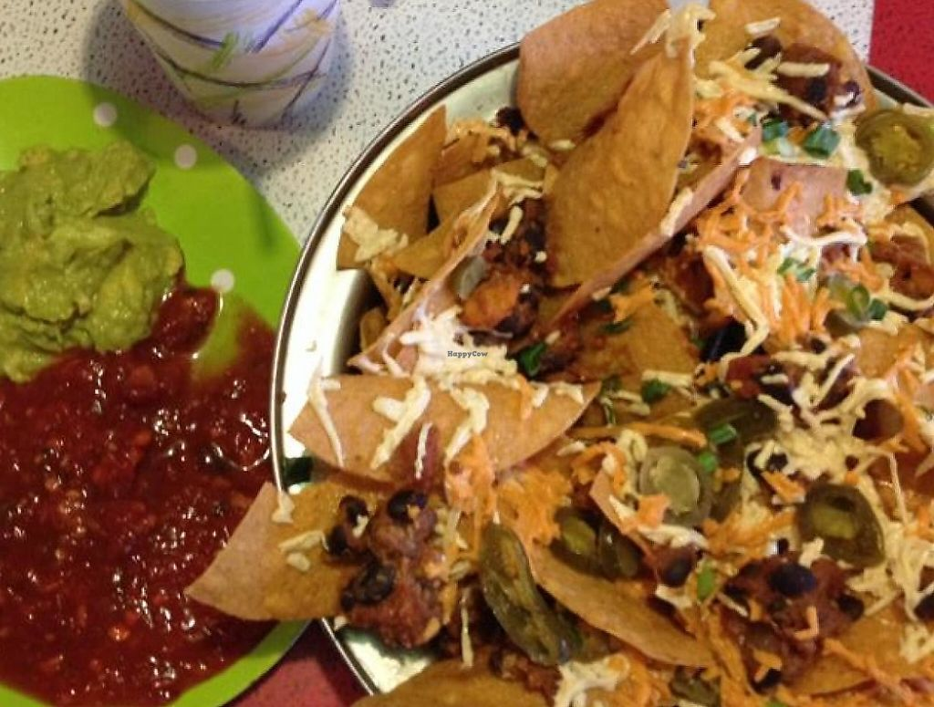 """Photo of Silly's Restaurant  by <a href=""""/members/profile/wrenosaurus"""">wrenosaurus</a> <br/>Vegan nachos with the chili added on! Came with homemade salsa and guacamole! Cherry shake with an added piece of chocolate cake! <br/> July 20, 2014  - <a href='/contact/abuse/image/13501/201493'>Report</a>"""