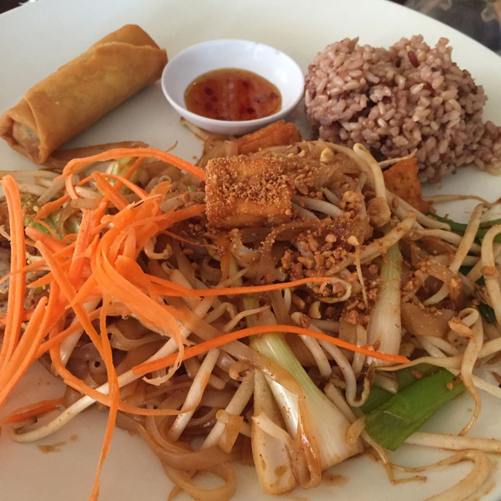 """Photo of Lotus Vegan  by <a href=""""/members/profile/MeagSil"""">MeagSil</a> <br/>pad Thai <br/> June 28, 2016  - <a href='/contact/abuse/image/13563/156520'>Report</a>"""