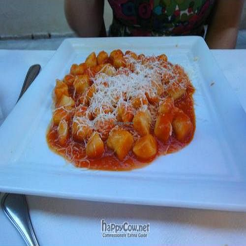 """Photo of Osteria Giorgione  by <a href=""""/members/profile/Jamila10ten"""">Jamila10ten</a> <br/>gnocchi with tomato sauce and parm cheese <br/> June 29, 2011  - <a href='/contact/abuse/image/13625/9471'>Report</a>"""