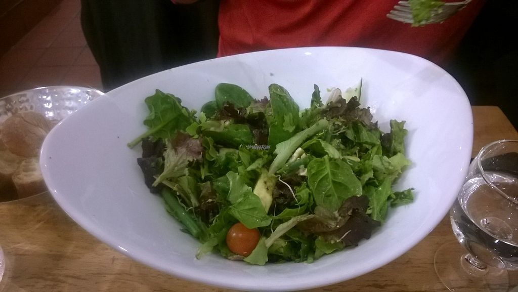 """Photo of Veget'Halles  by <a href=""""/members/profile/Vegan%20Victoria"""">Vegan Victoria</a> <br/>Green Salad <br/> February 3, 2017  - <a href='/contact/abuse/image/13798/221608'>Report</a>"""