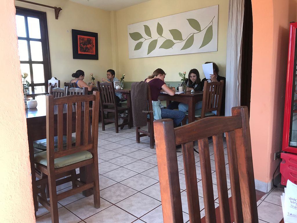 "Photo of La Media Naranja  by <a href=""/members/profile/MarinKat"">MarinKat</a> <br/>Bright, relaxed cafe setting full of tourists <br/> October 25, 2017  - <a href='/contact/abuse/image/13858/318848'>Report</a>"