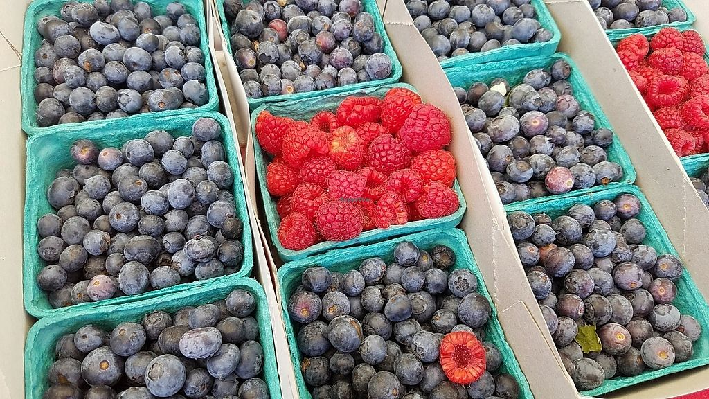 """Photo of Farmer's Market - Main St  by <a href=""""/members/profile/eric"""">eric</a> <br/>berries <br/> January 28, 2018  - <a href='/contact/abuse/image/13860/352061'>Report</a>"""