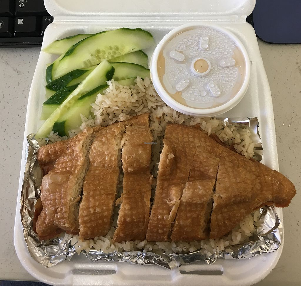 """Photo of Veggie Life Restaurant  by <a href=""""/members/profile/TinaCheong"""">TinaCheong</a> <br/>Hainan """"chicken"""" with rice to go <br/> December 13, 2017  - <a href='/contact/abuse/image/14017/335146'>Report</a>"""