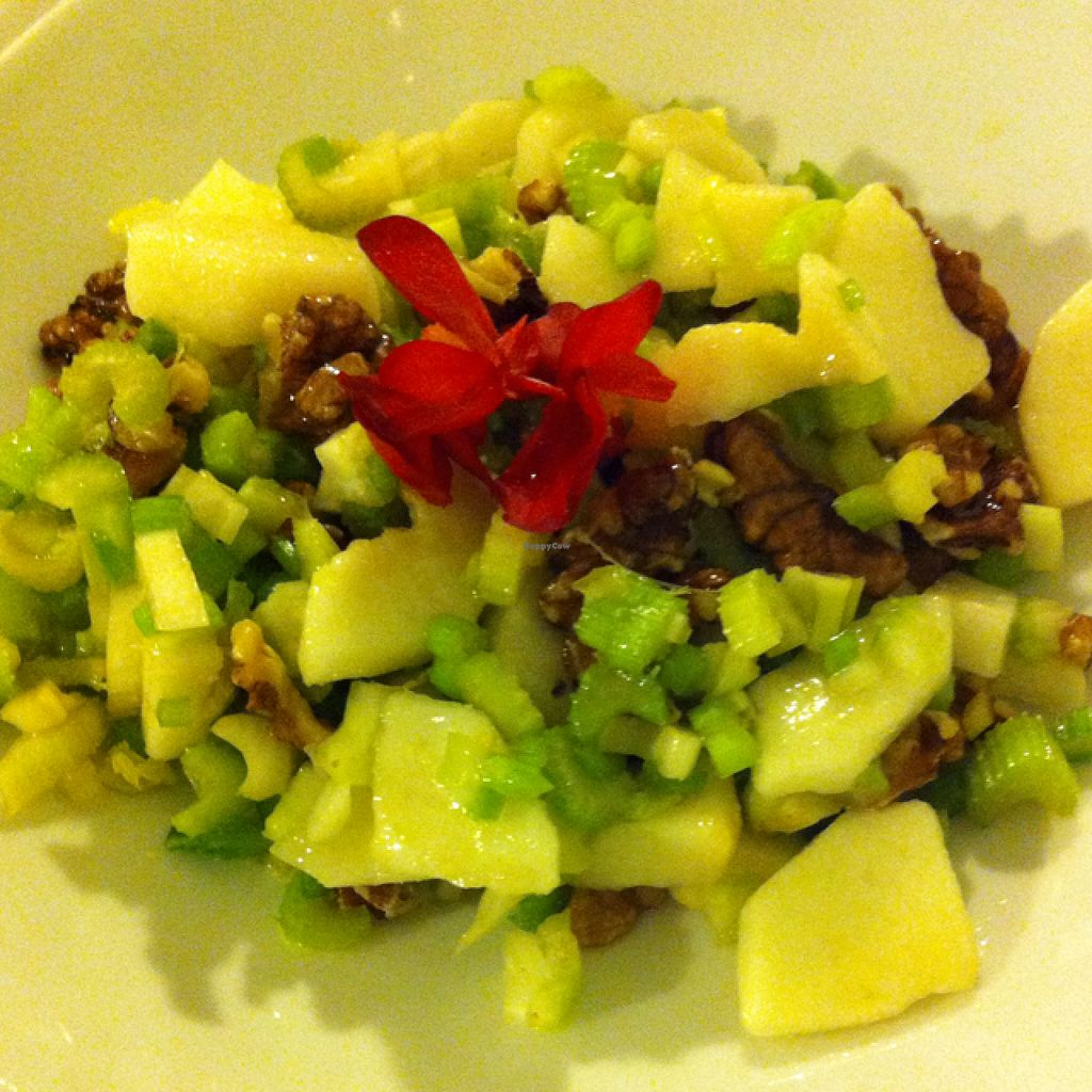 """Photo of Oh Mio Bio  by <a href=""""/members/profile/hokusai77"""">hokusai77</a> <br/>celery, pear and walnut salad <br/> September 6, 2015  - <a href='/contact/abuse/image/14143/116560'>Report</a>"""
