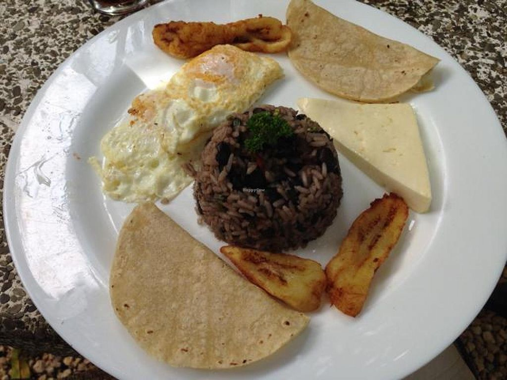 "Photo of El Sano Banano Restaurant  by <a href=""/members/profile/happycowgirl"">happycowgirl</a> <br/>Typical Costa Rican Breakfast (vegetarian) <br/> October 9, 2014  - <a href='/contact/abuse/image/14170/82432'>Report</a>"