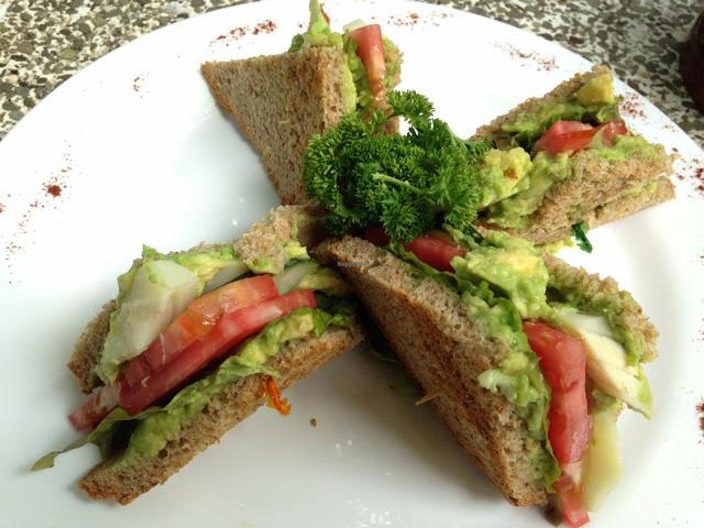 "Photo of El Sano Banano Restaurant  by <a href=""/members/profile/happycowgirl"">happycowgirl</a> <br/>Avocado Sandwich with hearts of palm added (vegan) <br/> October 9, 2014  - <a href='/contact/abuse/image/14170/82433'>Report</a>"