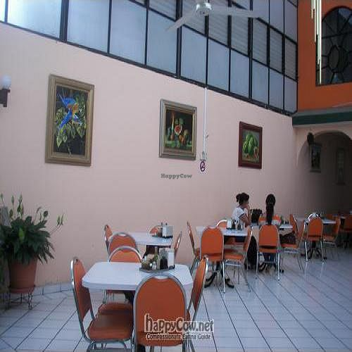 """Photo of Vegetariano Zanahoria  by <a href=""""/members/profile/Nefarity"""">Nefarity</a> <br/>The spacious seating arrangements <br/> August 29, 2008  - <a href='/contact/abuse/image/1422/1020'>Report</a>"""