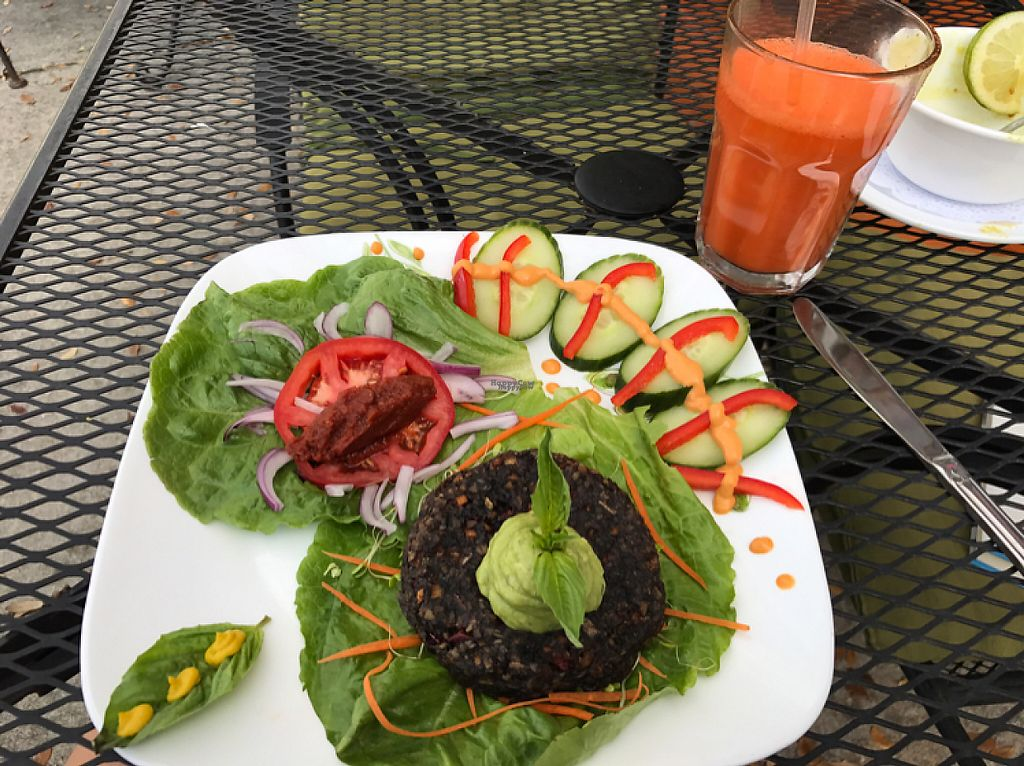 """Photo of Leafy Greens Cafe  by <a href=""""/members/profile/JayVeraSummer"""">JayVeraSummer</a> <br/>veggie burger <br/> March 9, 2017  - <a href='/contact/abuse/image/14358/234372'>Report</a>"""