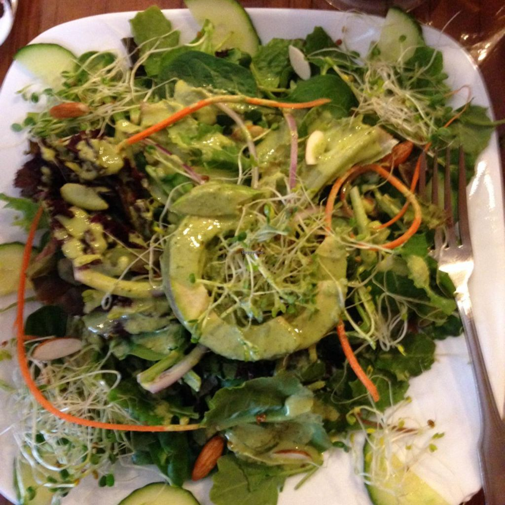 """Photo of Leafy Greens Cafe  by <a href=""""/members/profile/3carolyn"""">3carolyn</a> <br/>Leafy Greens Cafe in St Petersburg. perfect lunch! <br/> January 31, 2014  - <a href='/contact/abuse/image/14358/63453'>Report</a>"""