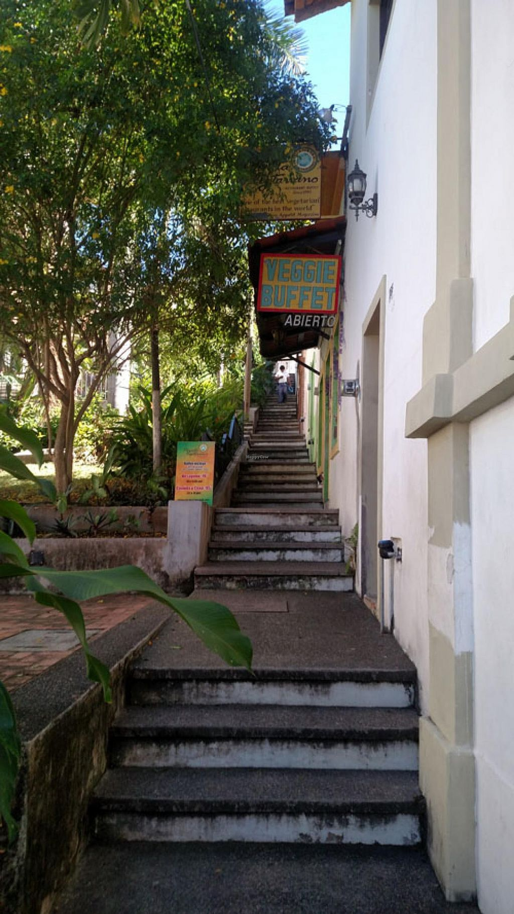 "Photo of Planeta Vegetariano  by <a href=""/members/profile/blaineb"">blaineb</a> <br/>Exterior image, coming up the street stairs towards entrance. (tough to find if coming from above) <br/> February 5, 2015  - <a href='/contact/abuse/image/1436/92271'>Report</a>"