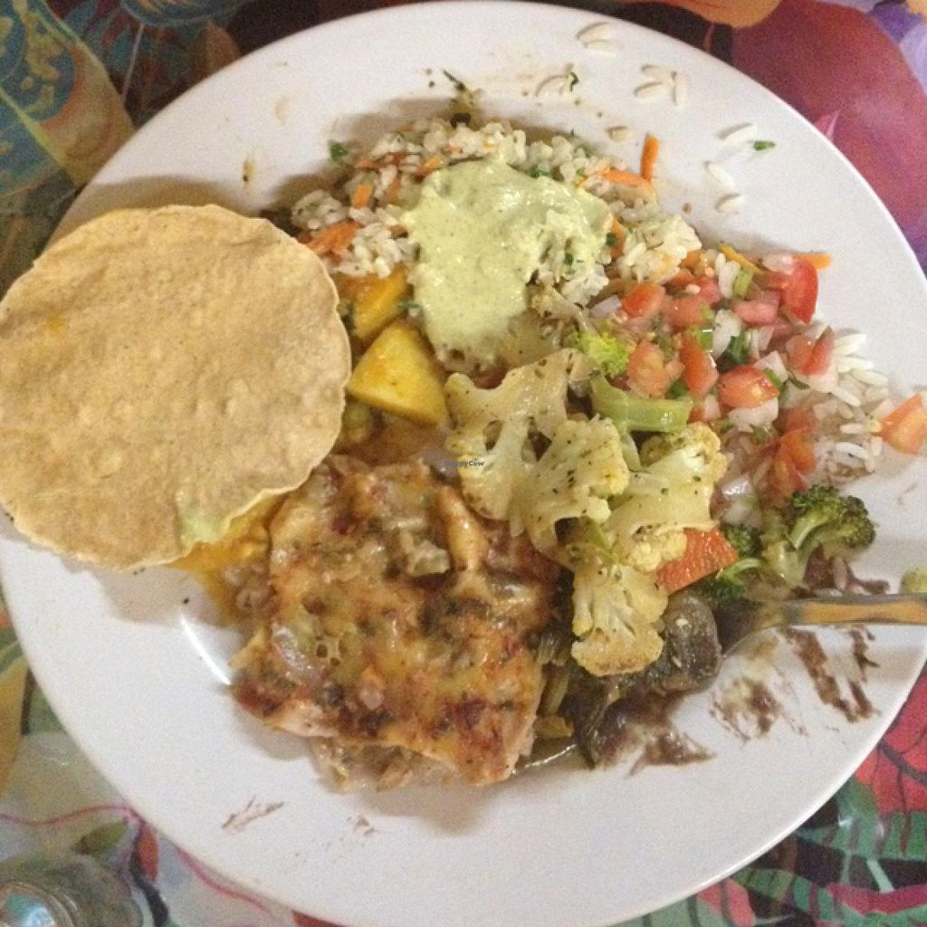 "Photo of Planeta Vegetariano  by <a href=""/members/profile/Veganerica"">Veganerica</a> <br/>dinner feb 2015 <br/> April 8, 2015  - <a href='/contact/abuse/image/1436/98300'>Report</a>"