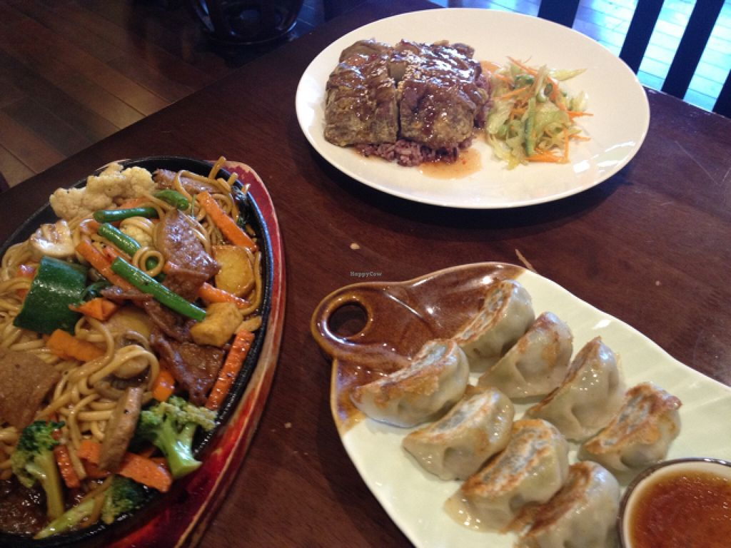 """Photo of Chat For Tea  by <a href=""""/members/profile/Buddy45"""">Buddy45</a> <br/>teppanyaki noodles, Mick duck, Gyoza <br/> December 2, 2015  - <a href='/contact/abuse/image/14391/126883'>Report</a>"""