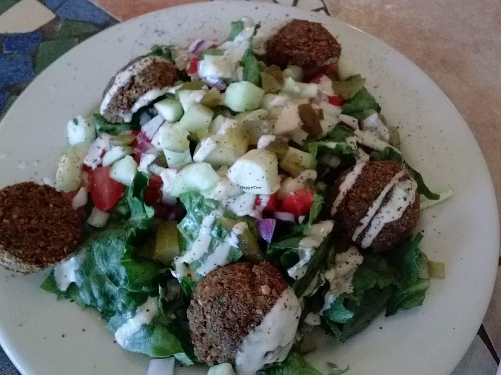 "Photo of Pita Jungle  by <a href=""/members/profile/MizSharon"">MizSharon</a> <br/>Vegan falafal salad with tahini sauce. After taking the pickles out, it was sooo good