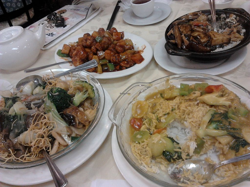 """Photo of Gourmet Vegetarian Restaurant  by <a href=""""/members/profile/CynthiaL3"""">CynthiaL3</a> <br/>Lots of yummy options as you can see! Please excuse the fact that we dug into the food before I took this shot! <br/> November 2, 2015  - <a href='/contact/abuse/image/14669/123599'>Report</a>"""