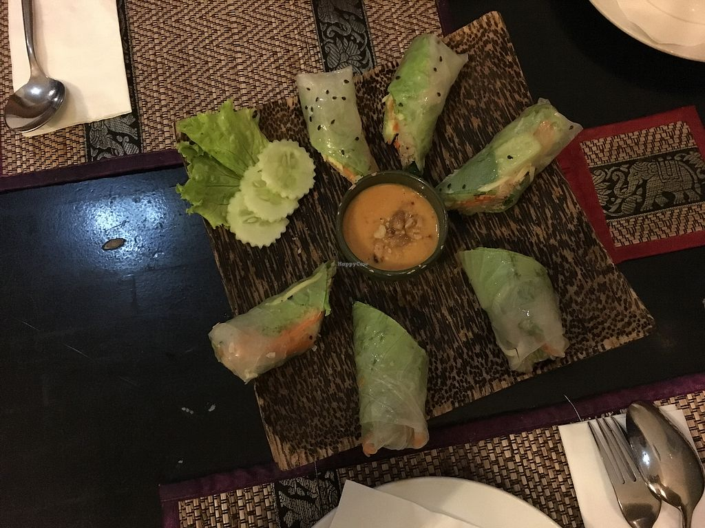 "Photo of Chamkar Cafe - The Passage  by <a href=""/members/profile/Elli-AnnaGoumas"">Elli-AnnaGoumas</a> <br/>veg spring rolls  <br/> August 2, 2017  - <a href='/contact/abuse/image/14676/288009'>Report</a>"