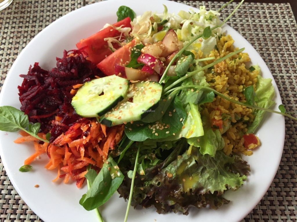 """Photo of Anna Prem - B6  by <a href=""""/members/profile/Paolla"""">Paolla</a> <br/>Some of the options from the salad buffet <br/> September 11, 2015  - <a href='/contact/abuse/image/14705/117295'>Report</a>"""
