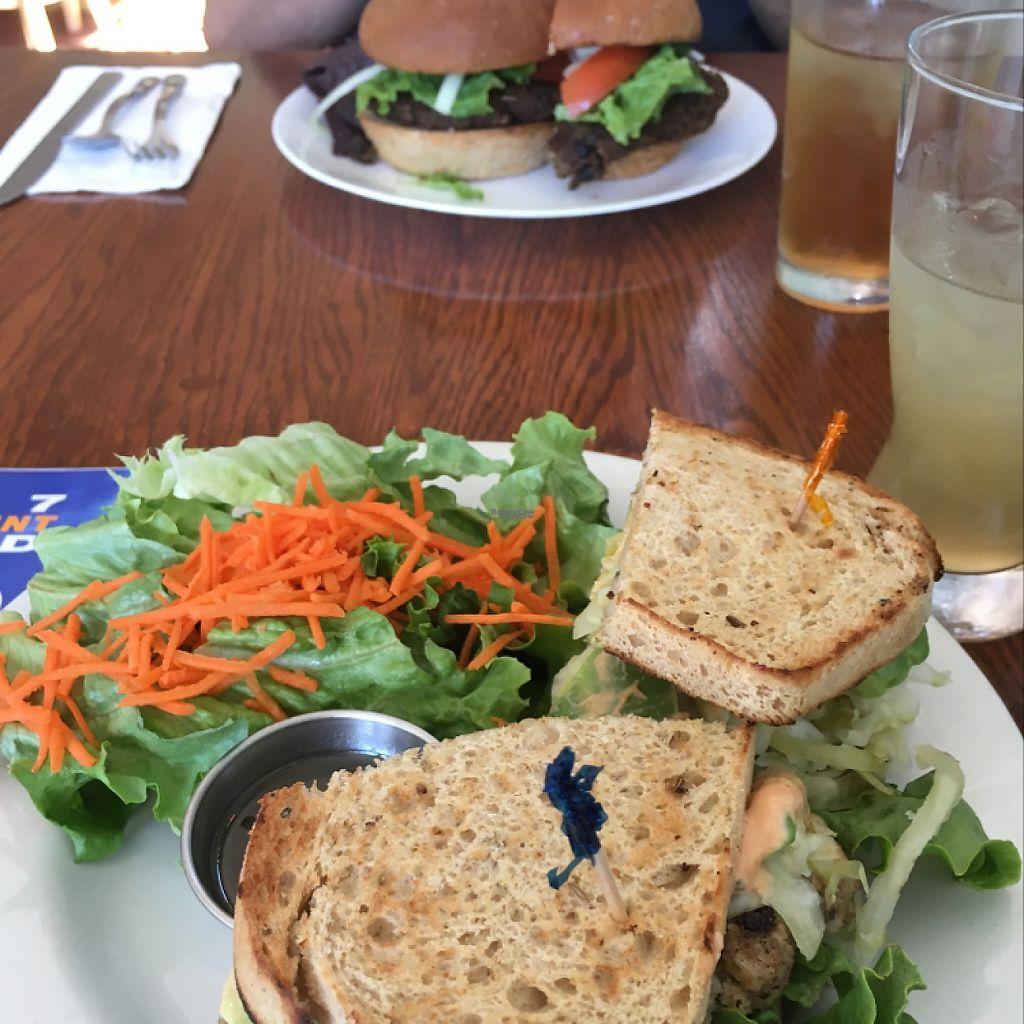 """Photo of Wildflower Cafe and Bakery  by <a href=""""/members/profile/Confetta"""">Confetta</a> <br/>vegan Rueben-yum <br/> April 15, 2017  - <a href='/contact/abuse/image/1480/248521'>Report</a>"""