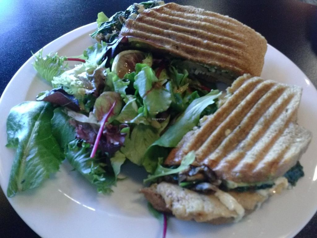 "Photo of CLOSED: Red Velvet Cafe - Sahara  by <a href=""/members/profile/Sonja%20and%20Dirk"">Sonja and Dirk</a> <br/>veganized chicken provolone panini <br/> December 29, 2014  - <a href='/contact/abuse/image/14814/88979'>Report</a>"