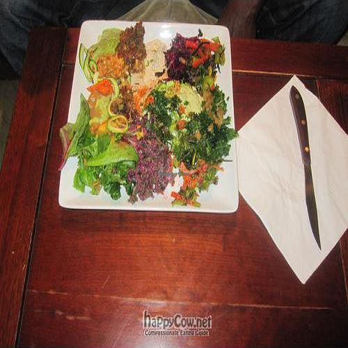 """Photo of CLOSED: Rawstar  by <a href=""""/members/profile/Lovelife"""">Lovelife</a> <br/>A Sample Plate <br/> June 6, 2011  - <a href='/contact/abuse/image/14890/9069'>Report</a>"""