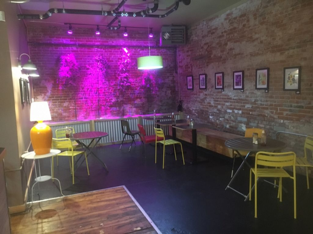 """Photo of The Hummingbird Cafe  by <a href=""""/members/profile/Traveling%20bard"""">Traveling bard</a> <br/>cool back bar area <br/> May 13, 2016  - <a href='/contact/abuse/image/14944/148808'>Report</a>"""