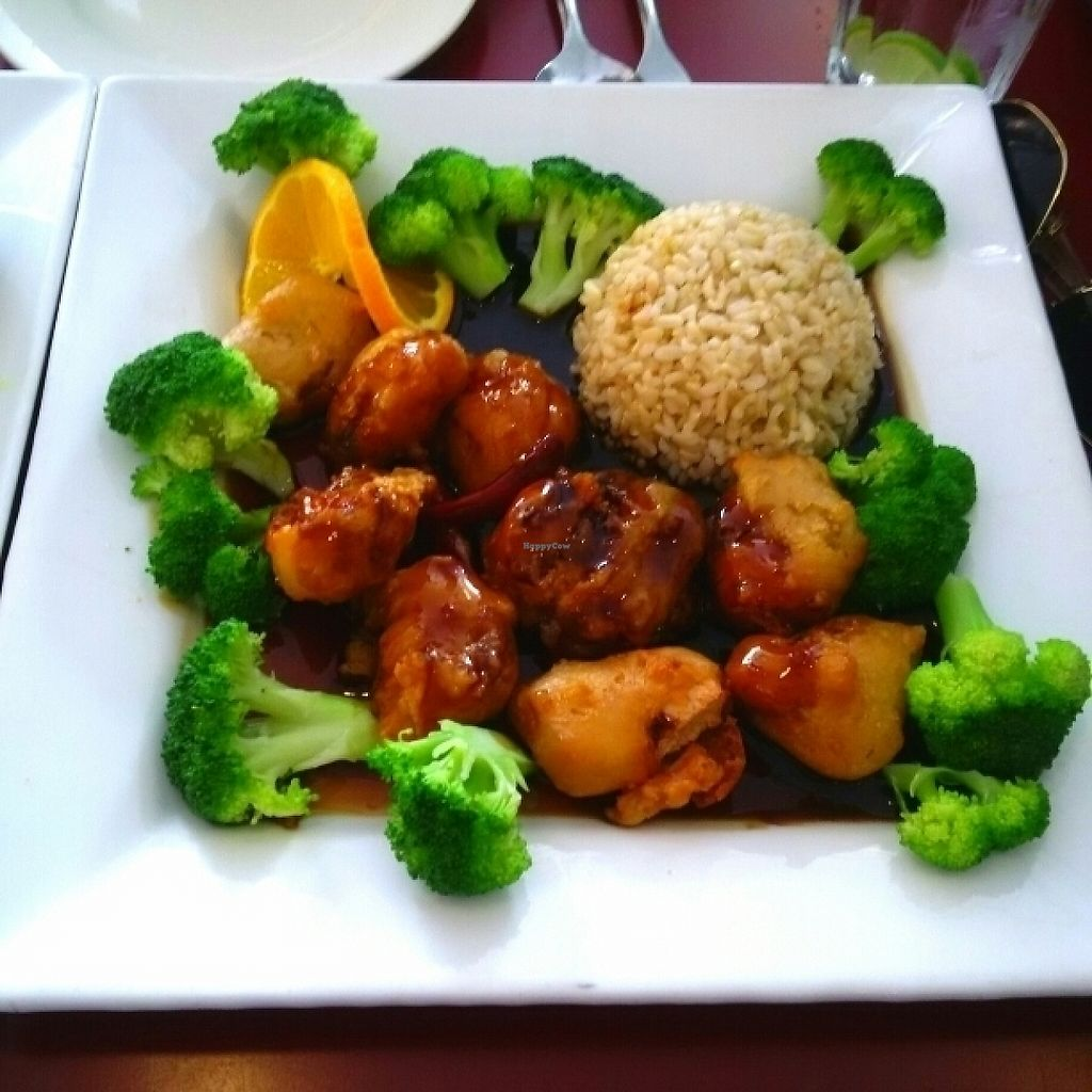 """Photo of Green Earth Vegetarian Cuisine  by <a href=""""/members/profile/stafanya"""">stafanya</a> <br/>Orange Imagination <br/> May 29, 2017  - <a href='/contact/abuse/image/15063/263913'>Report</a>"""
