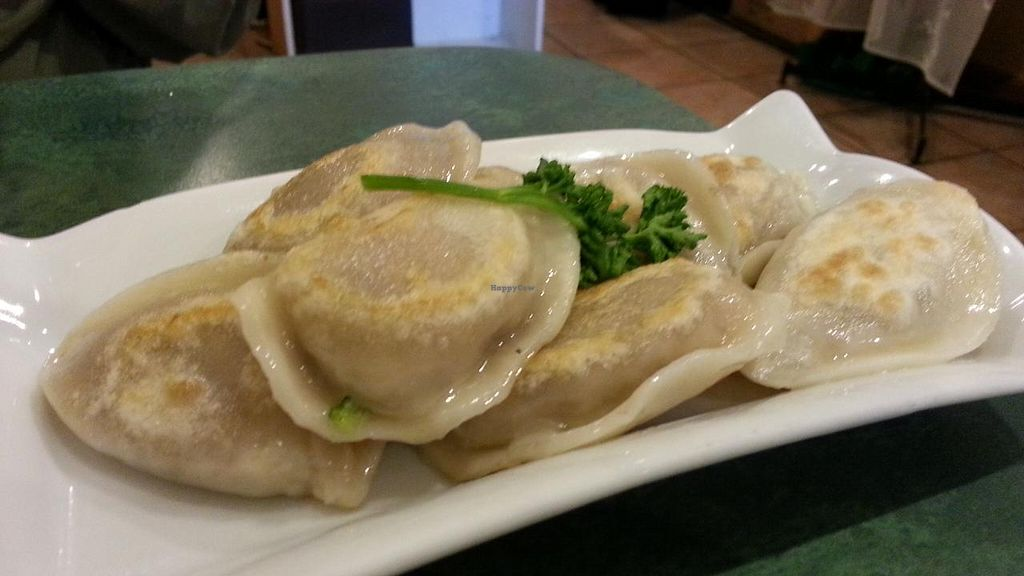 """Photo of CLOSED: Spicy Vegetarian Cuisine  by <a href=""""/members/profile/eric"""">eric</a> <br/>dumplings <br/> August 10, 2014  - <a href='/contact/abuse/image/15112/76553'>Report</a>"""